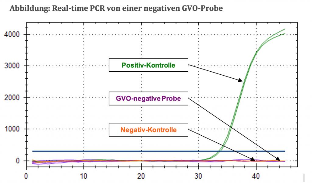 abbildung-real-time-pcr-von-einer-negativen-gvo-probe