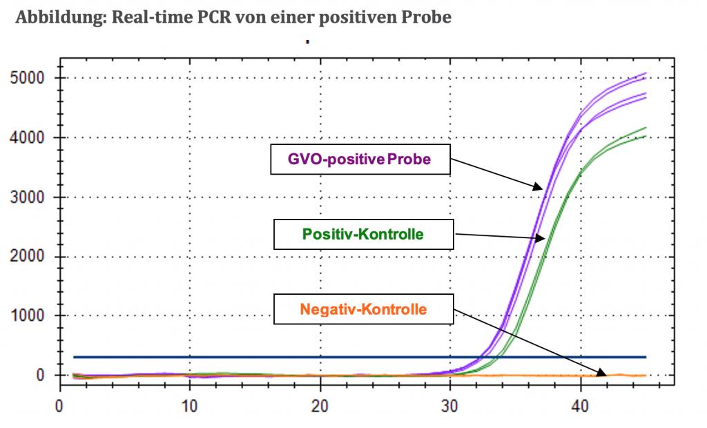 bbildung: Real-time PCR von einer positiven Probe